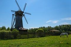 Prado del caballo del molino rural Fotos de archivo