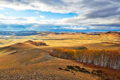 Prado del otoño y bosque del abedul en la ladera Foto de archivo libre de regalías