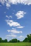 Prado del resorte y cielo azul Foto de archivo libre de regalías