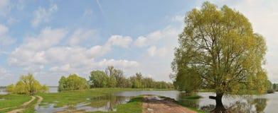 Prado del terreno de aluvión Fotografía de archivo