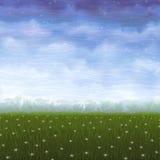 Prado del verano cubierto con las flores blancas de la estrella Foto de archivo libre de regalías
