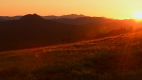 Prado del verano de California septentrional, Estados Unidos almacen de video