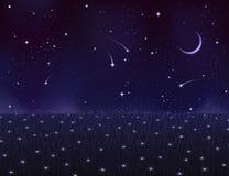 Prado del verano de la noche cubierto con las flores de la estrella ilustración del vector