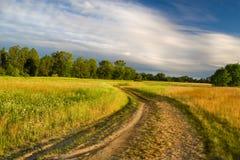Prado del verano y camino de tierra hermosos Imagen de archivo libre de regalías