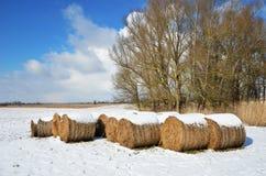 Prado do inverno com pacotes da palha Fotos de Stock Royalty Free