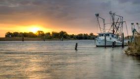 Prado dourado, Louisiana foto de stock