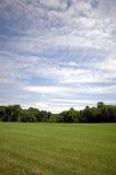Prado e céu Imagens de Stock