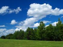 Prado e céu azul Imagem de Stock Royalty Free