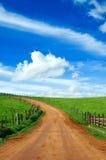 Prado e estrada de terra bonitos   fotografia de stock
