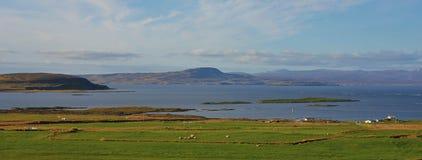 Prado e fiorde verdes em Nordurland, Islândia Cena litoral Imagens de Stock Royalty Free