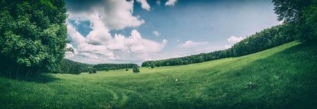 Prado e florestas, filtro análogo imagens de stock