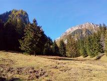Prado e montanhas Imagem de Stock Royalty Free