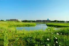 Prado e prédios de escritórios verdes Fotografia de Stock Royalty Free