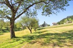 Prado e vila alpinos perto de Tolmin, Eslovênia Fotos de Stock