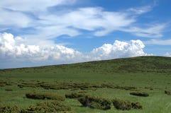 Prado en la montaña Fotos de archivo