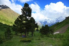 Prado en las montañas Imagenes de archivo