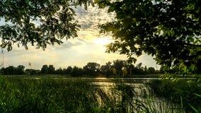 Prado en los bancos del río Vistula La luz del sol poniente en el lago metrajes