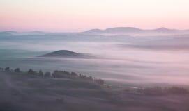 Prado en niebla gruesa fotos de archivo