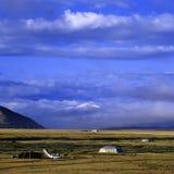 Prado en Tíbet Fotos de archivo libres de regalías