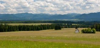 Prado en verano Tatras bajo y cielo nublado Imagen de archivo libre de regalías