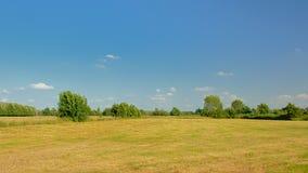 Prado ensolarado com árvores sob um céu azul claro no reerve da natureza de Kalkense Meersen, Flanders, Bélgica Fotos de Stock Royalty Free