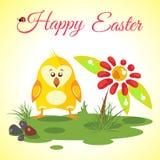 Prado feliz del fondo de Pascua con el pollo lindo y la flor roja Foto de archivo