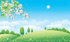 Prado floral com plantas de florescência ilustração royalty free