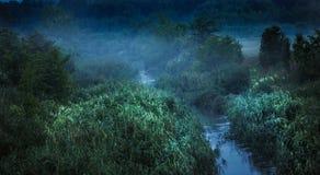 Prado, fotografia da paisagem, arte da parede, cópia da natureza, decoração home, campos de trigo, Art Photography, cópia, imagem Foto de Stock Royalty Free