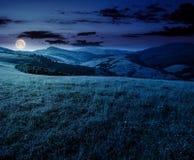 Prado herboso en montañas en la noche Imágenes de archivo libres de regalías
