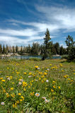 Prado, lago, e céu imagens de stock royalty free