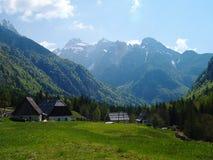 Prado & montanhas alpinos Fotos de Stock Royalty Free