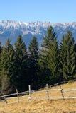 Prado na montanha Imagem de Stock Royalty Free
