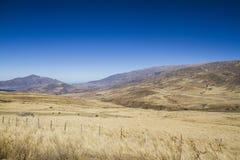 Prado nas montanhas Foto de Stock