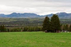 Prado nas montanhas Imagem de Stock
