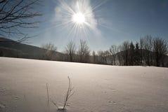 Prado nevado do inverno Fotografia de Stock Royalty Free