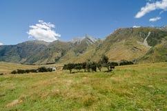 Prado pacífico con los árboles y las montañas Imágenes de archivo libres de regalías