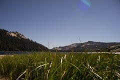 Prado pacífico Lago Tenaya Yosemite foto de archivo libre de regalías