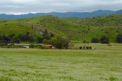 Prado pastoral Fotografía de archivo