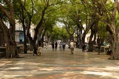 Prado Pedestrian Boulevard, Havana, Cuba Royalty Free Stock Image