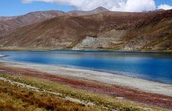 Prado pelo lago Fotos de Stock