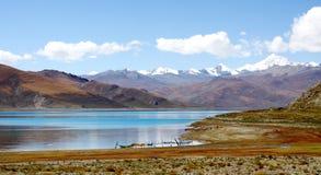 Prado pelo lago Imagem de Stock