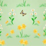 Prado sem emenda da mola da textura com vetor da borboleta Imagens de Stock