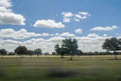 Prado a través de la ventana de un coche móvil Imágenes de archivo libres de regalías