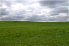 Prado verde, céu tormentoso Fotografia de Stock