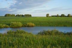 Prado verde com lago e montes Fotografia de Stock Royalty Free