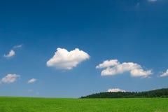 Prado verde con el cielo azul Foto de archivo