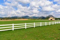 Prado verde con el cielo azul y la cerca blanca Imágenes de archivo libres de regalías