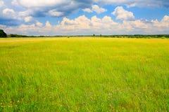 Prado verde con el cielo nublado arriba Fotografía de archivo