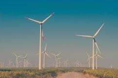 Prado verde con las turbinas de viento Fotografía de archivo libre de regalías