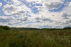 Prado verde do verão e nuvens brilhantes Imagens de Stock Royalty Free